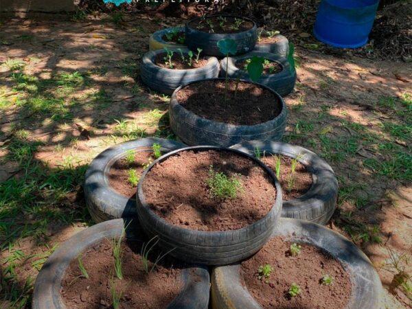 Em Lorena, hortas sustentáveis estão sendo preparadas no Parque Taboão